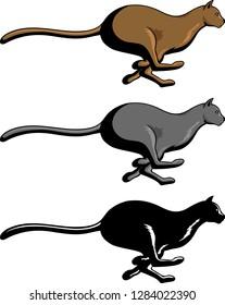 Vector illustration of a Jaguar vector for logo or t-shirt use.