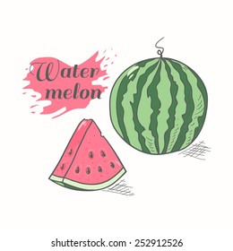 Vector illustration of juicy watermelon with slice