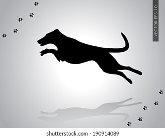 Vector illustration of jumping smooth collie working champion