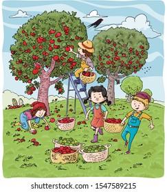 vector illustration, kids in orchard, cartoon concept.