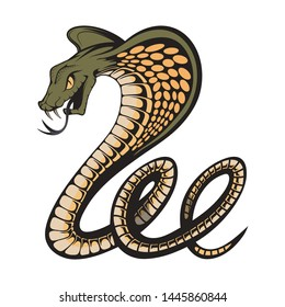 Vector illustration of a king cobra with hood. Snake Cobra is ready to hit with fangs and tongue. Viper snake. Mascot realistic King cobra illustration for a sport team. Vector graphics to design