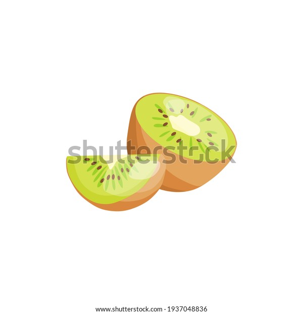 Vector illustration of a kiwi. Source of vitamin C and B.