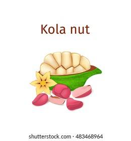 Kola Nut Images, Stock Photos & Vectors | Shutterstock