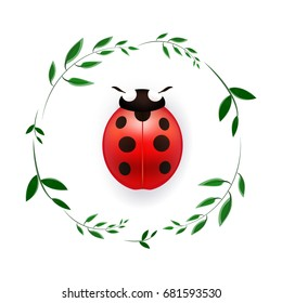 Vector illustration with a ladybug, ladybird and green leaves on white background. A ladybird with green leaves on white. Vector insect.  Green leaves. Nature vector illustration. Object on banner.