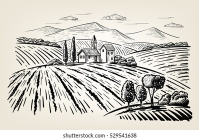 Vector illustration landscape nature with agrarian fields