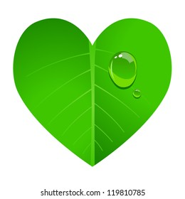 Vector illustration of a leaf shaped in heart with dew on it