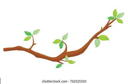 Vector illustration of leafy tree branch against a white background