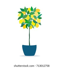 a vector illustration; a lemon tree in a pot; a potted tree; cartoon hand drawn lemons with leaves isolated; in simple minimalistic style