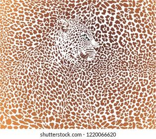 vector illustration leopard brown background