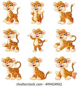 Vector illustration of  Leopard cartoon set collection