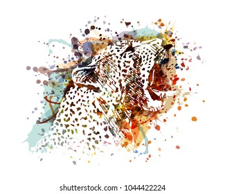 Vector illustration of a leopard head