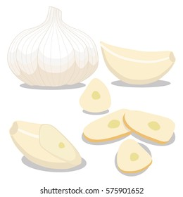 Vector illustration logo for whole ripe vegetable bitter white garlic, chopped foods sliced. Garlic pattern consisting of label bittersweet taste food. Eat fresh bitters garlics on health.