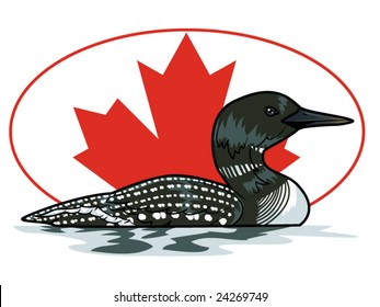 vector illustration of a loon in front of a Canadian maple leaf... background contained in clipping mask