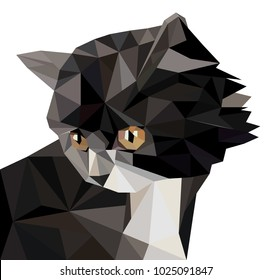 Vector illustration of low poly cat icon. Geometric polygonal cat silhouette. Low poly kitten