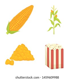 Vector illustration of maize and food sign. Collection of maize and crop stock vector illustration.