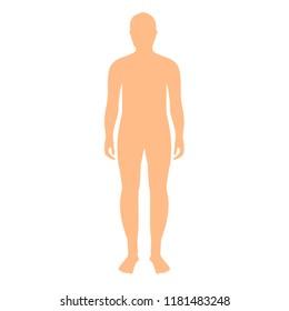 Vector illustration. Male human body silhouette