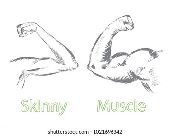 Vector illustration of man arms. Skinny arm and muscle biceps. Concept about sport and bodybuilding in sketch art style.