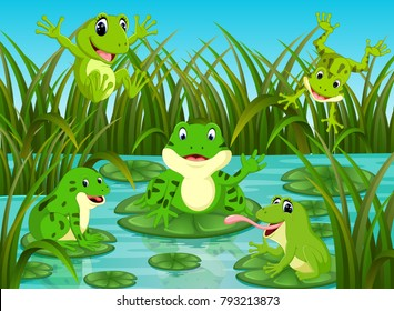 vector illustration of many frogs on leaf with river scene