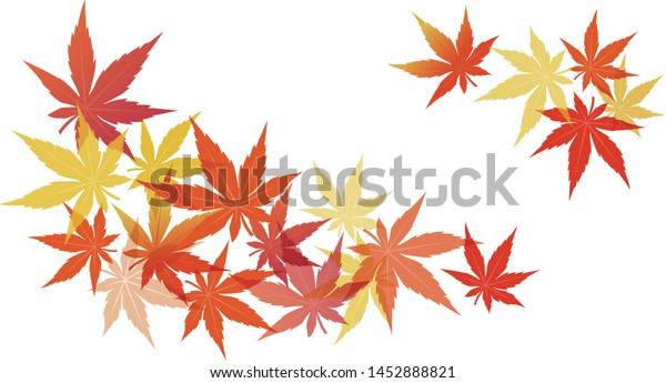 Vector Illustration of Maple leaves