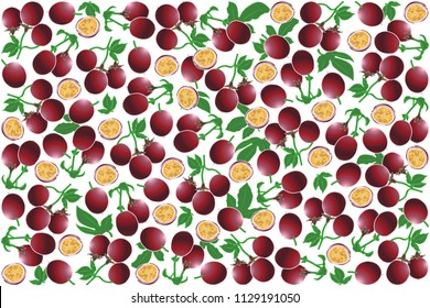 vector illustration of maracuja and leaf design background white and fruit EPS10