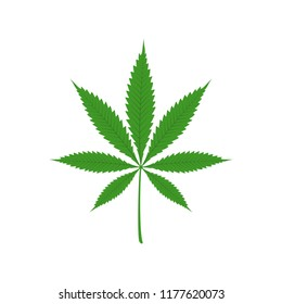Vector illustration of marijuana leaf, cannabis. Isolate on white background