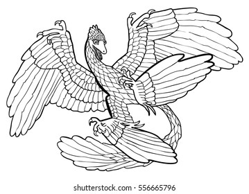 Vector illustration of microraptor black and white
