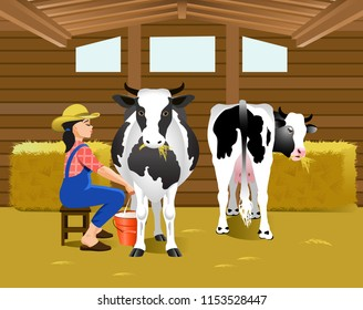 Vector Illustration. Milking of cows in cowshed.