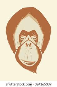 Vector illustration of monkey. Orangutan