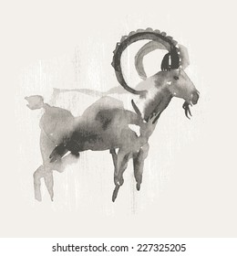 Vector illustration of mountain goat, symbol of 2015. Watercolor (hand draw).