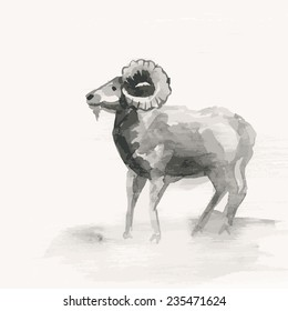 Vector illustration of mountain goat, symbol of New Year. Year of the goat. Watercolor (hand draw).