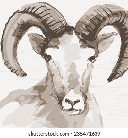 Vector illustration of mountain goat. Watercolor (hand draw). Year of the goat.