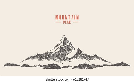 Vector illustration of a mountain peak with pine forest, engraving style, hand drawn