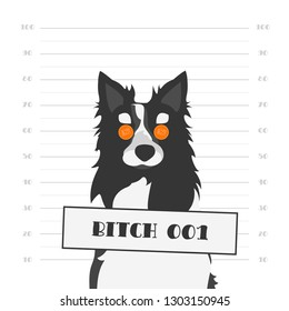 Vector Illustration. Mugshot of a Hard Faced Dog with Orange Round Glasses. Bitch as Female Dog of Black and White Border Collie.