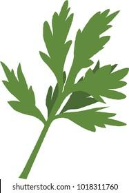 Vector illustration of mugwort or wormwood