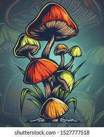 vector illustration of mushroom in nature wild