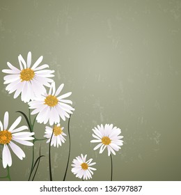 Vector Illustration of a Natural Background with Daisies