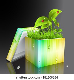 Vector illustration of nature motives and gift.Abstract concept.