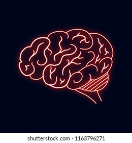 Vector illustration of neon human brain. Led sign. Vector isolated banner.  Science knowledge concept.