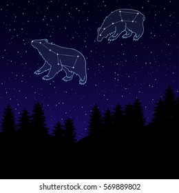 vector illustration of a night sky with the constellation of the Great and Little Bear. Ursa Major and Ursa Minor. Night landscape with starry sky and silhouettes of spruce trees.