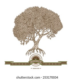 Vector illustration of old hand drawn tree, ribbon and label. Brown and beige colors, retro style.