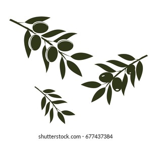 vector illustration of olive branches isolated on white background.