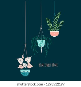 Vector illustration on dark background. Cozy card with cute home flowers in hanging pots.Lettering. Home sweet home