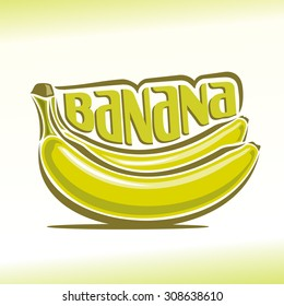 Vector illustration on the theme of the logo for banana plant, consisting of two ripe yellow bananas branch still life composition of plantains