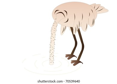 Vector illustration of ostrich hides it's head in sand