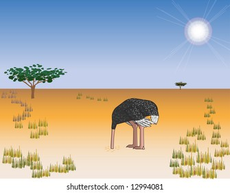 Vector illustration of an ostrich with his head in the sand. Editable.