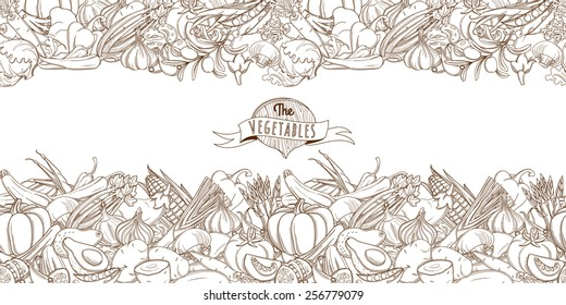 Vector illustration Outline hand drawn sketch seamless vegetable border (flat style, thin  line)