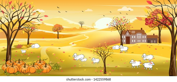 Vector illustration of panorama autumn landscape in english countryside with forest trees and leaves falling,Panoramic of farm field with family of lambs on hills in fall season with yellow foliage.