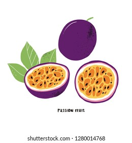 Vector illustration of passion fruit. Hand drawn vector with print passion fruit. Fresh juicy summer print.