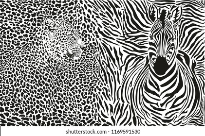 vector illustration pattern background leopard and zebra skins