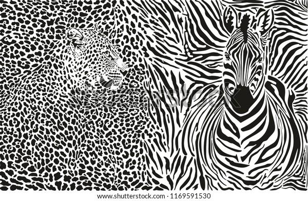 Illustration of leopard skin and zebra stripes wallpaper mural design